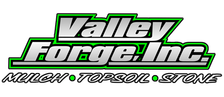Valley Forge Inc.